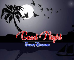 Beautiful Good Night 4k Images For Whatsapp Download 105