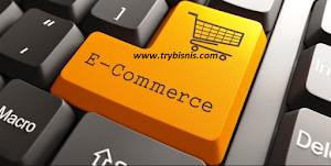 Sebuah Pengantar Untuk Website E-Commerce SEO Untuk Pemula