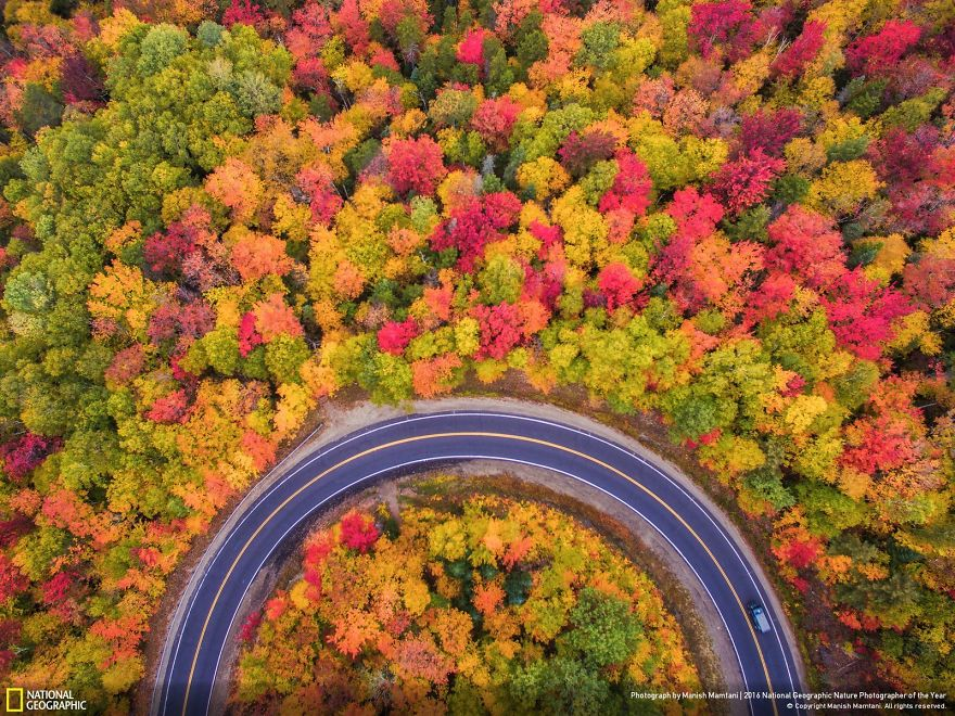 20+ Of The Best Entries From The 2016 National Geographic Nature Photographer Of The Year - Aerial Autumn