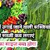 बरसाती सब्जियां, जुलाई में उगाई जाने वाली सब्जियां