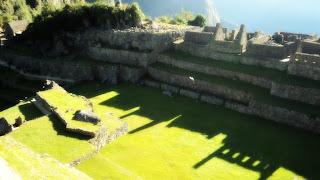 Praça Principal: Lugar de Encontro em Machu Picchu