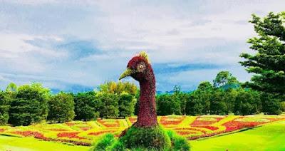 Taman Bunga Nusantara Bogor