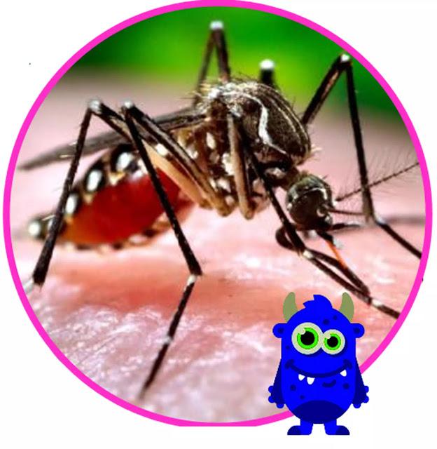 Pemberantasan penyakit malaria adalah dengan memotong siklus hidup  Plasmodium, yaitu  dengan  cara mencegah adanya genangan air atau menutup tempat penampungan air sehingga mencegah nyamuk nyamuk untuk dapat  tumbuh menjadi dewasa.  Cara  lain adalah dengan memberikan obat kina kepada penderita.