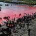 Κόκκινη βάφτηκε η θάλασσα από το κυνήγι των φαλαινών