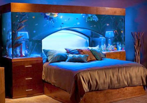 Coolest Fish Bowls and Awesome Aquarium Designs (15) 8