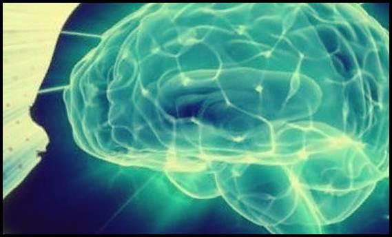 dieta alimentara contra imbatranirii creierului si scaderea memoriei