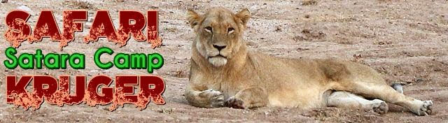 Safari-Kruger-De-Shukuza-a-Satara