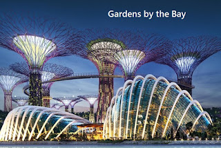 Cloud forest,Flower dome,Supertree,SIngapore,Gardens by the bay