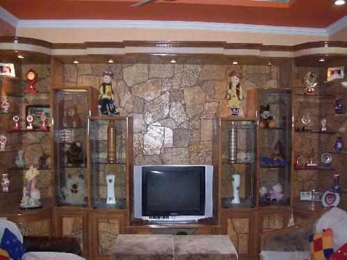 Showcase Design In Living Rooms