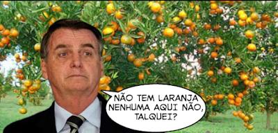 Bolsonaro e o laranjal