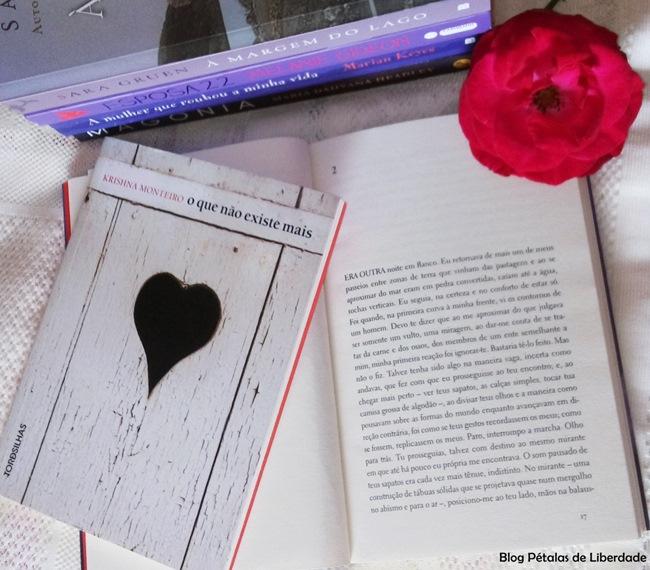 Resenha, livro, O-mal-de-Lázaro, Krishna-Monteiro, Tordesilhas, capa, sinopse, trecho, blog-literario, petalas-de-liberdade, diagramacao