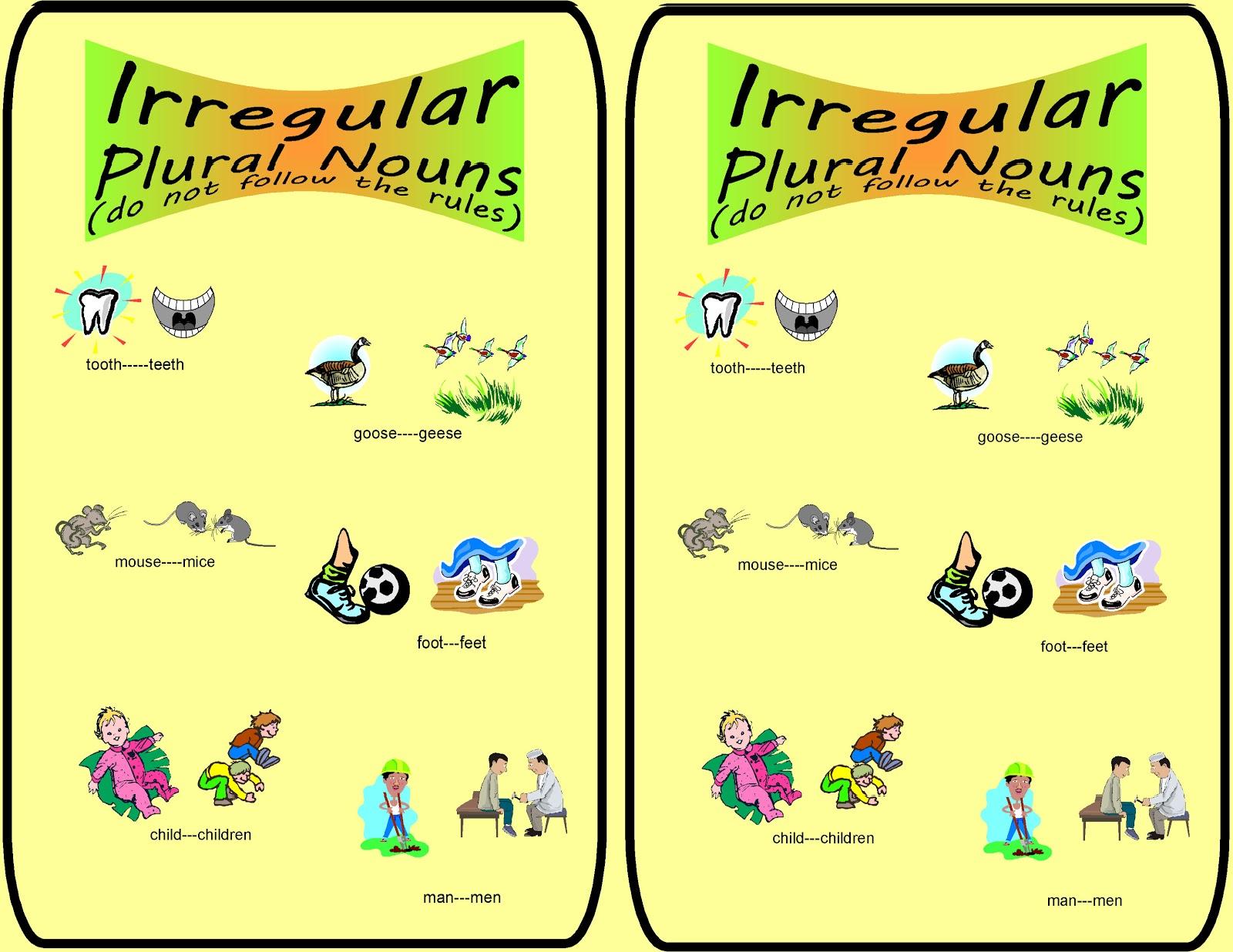 Irregular Plurals List 4th Grade