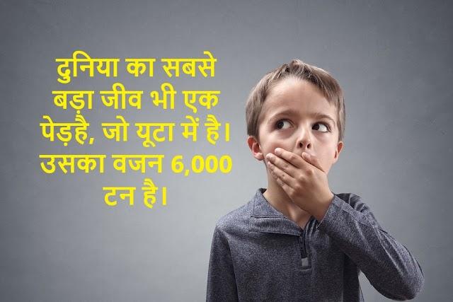 amazing वाले   science facts in hindi में