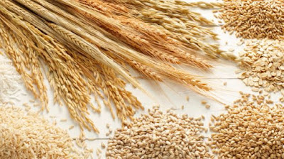 eat-more-whole-grains-to-live-longer