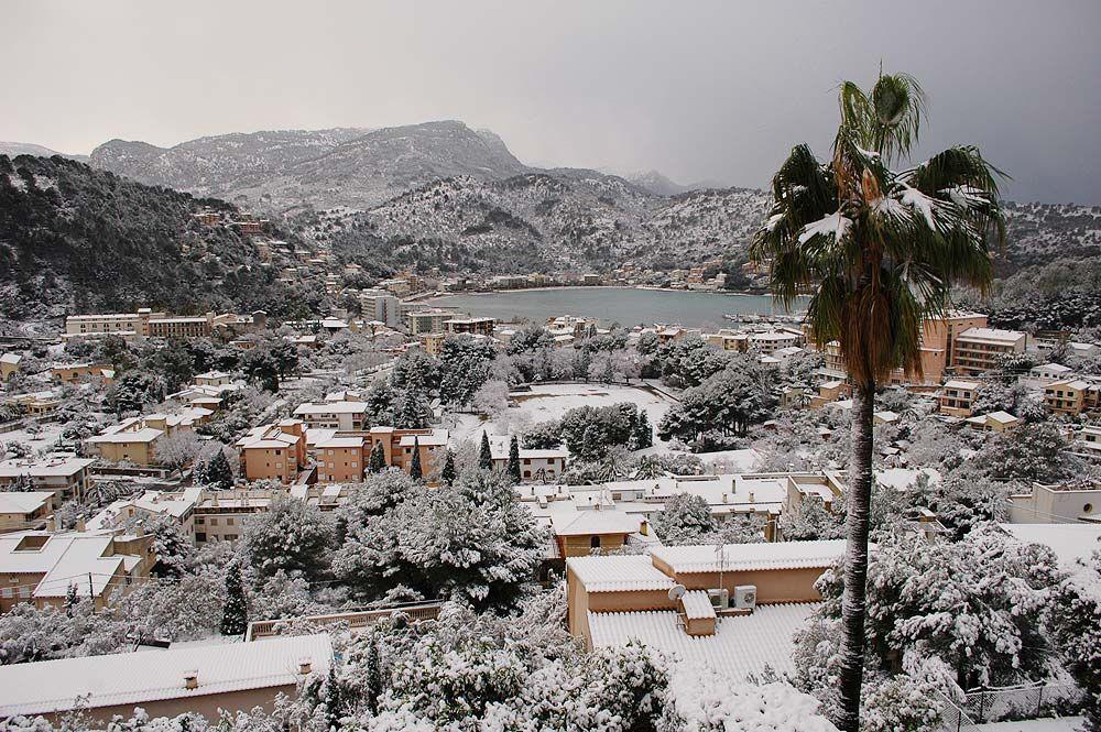 Natur, hälsa och trädgård: Winter in Mallorcadessa
