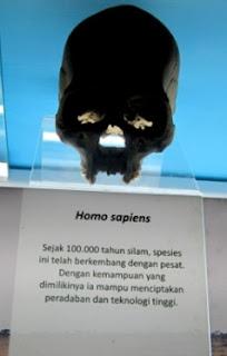 foto tulang manusia purba
