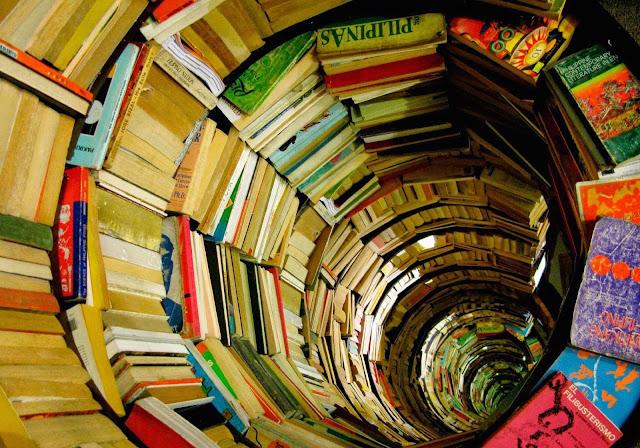 http://www.oblogdomestre.com.br/2017/11/LicencaPoetica.Literatura.html