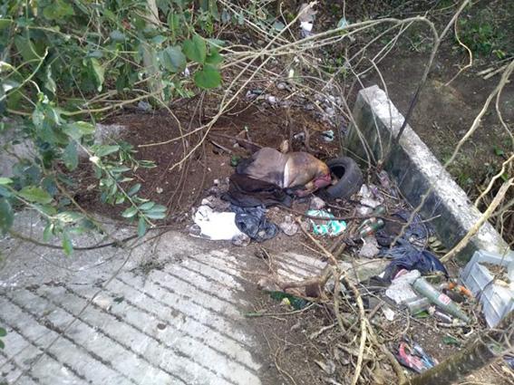 3244a42a0 ... costado de un canal de aguas negras muy cerca de la carretera  Lagunilla-Coatzintla, en Papantla; el cadáver presentaba un avanzado estado  de ...