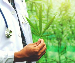La mariguana podría curar el COVID-19 según estudio.
