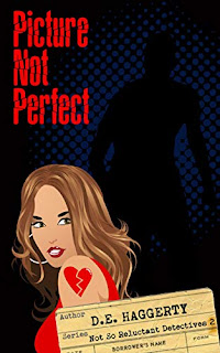 Picture Not Perfect by D. E. Haggerty