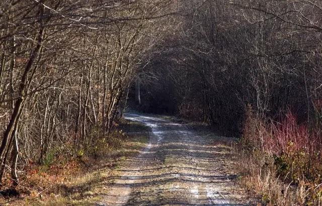 Essonne : Aïssa Z., accusé de 34 viols et agressions sexuelles entre 1995 et 2000... Un cold case devant la justice