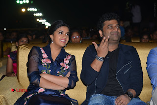 Nenu Local Audio Launch Stills  0190.JPG