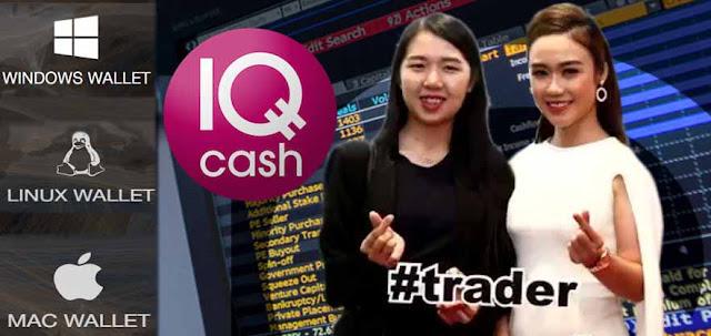 IQ Cash