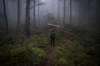 Heboh Foto Latihan Pasukan PKI di Hutan