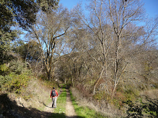 Camino del Cid. Salida de Pinilla de Jadraque