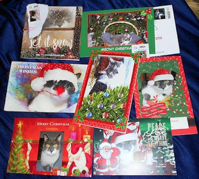5 Christmas Card Design Mistakes to Avoid