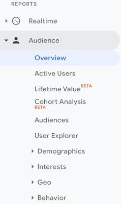 Audience Insight Google Analytics