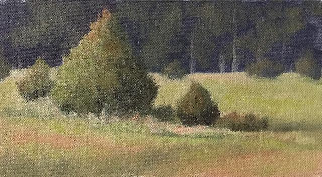 green landscape study Jul 11 2019