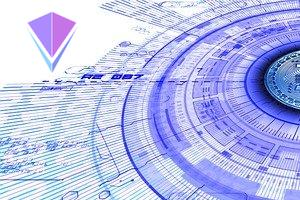VIDYA: 2020 Year-End Development