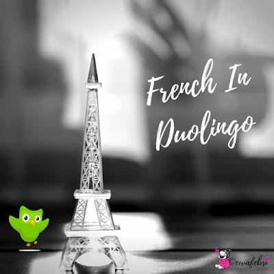 belajar bahasa perancis dengan duolingo apk