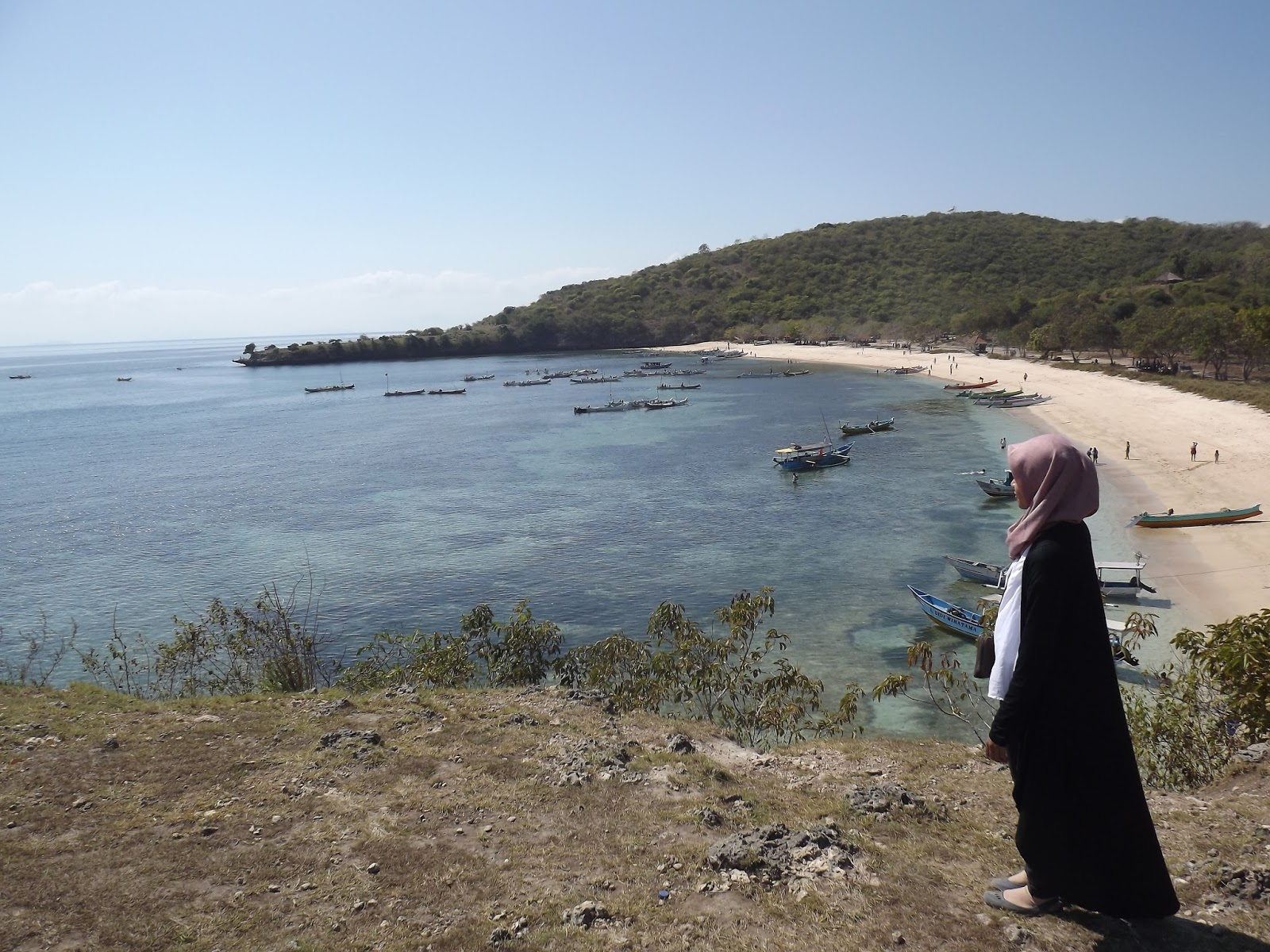 Hello Nemo Hello Coral Menyibak Isi Pantai Pink Lombok Timur