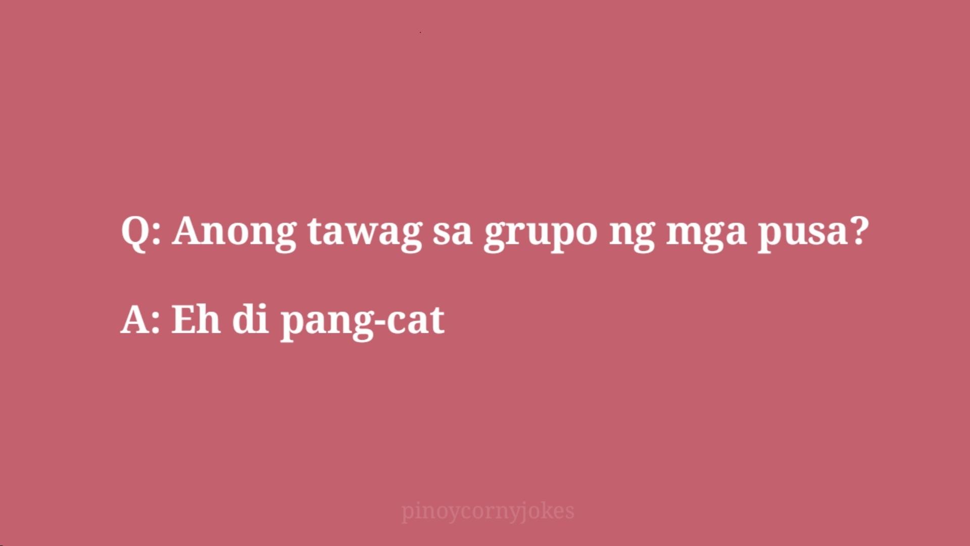 pang cat pinoy jokes