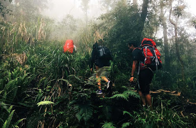 http://www.lomboksociety.com/2019/10/best-tips-for-rinjani-trekking.html