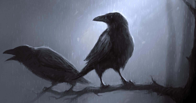 tiga burung gagak hitam malam hitam arti banyak forex