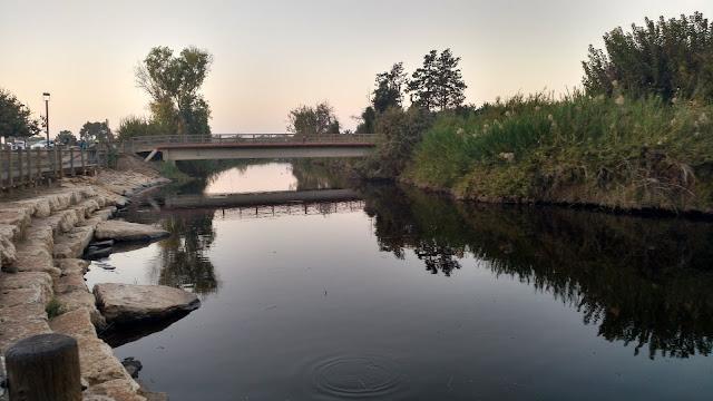 גשר הצבים
