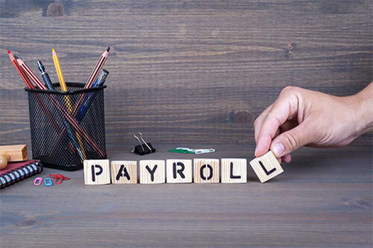 Online Payroll Service: 5 Things You Should Look for in a Payroll Provider