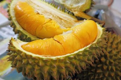 Kandungan Nutrisi Durian