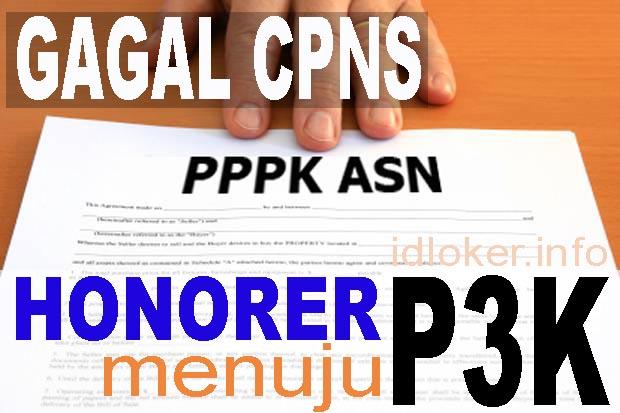Honorer Gagal CPNS 2018 diangkat menjadi PPPK (P3K)