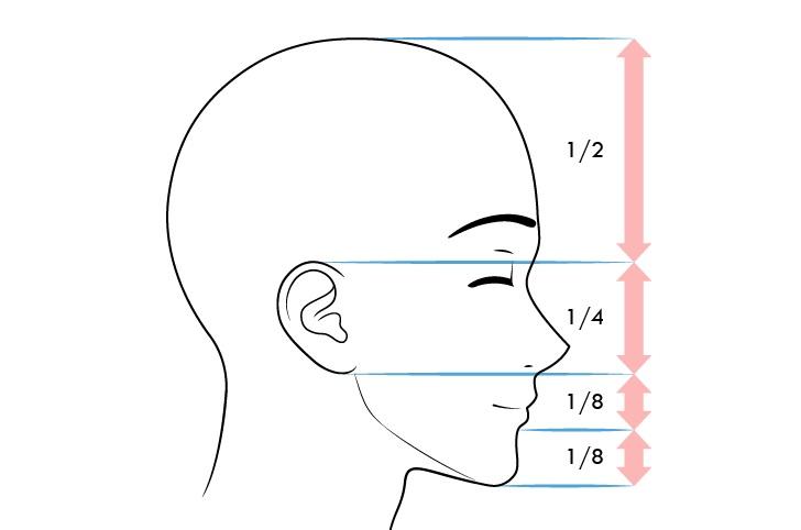 Anime laki-laki proporsi wajah tampilan konten ekspresi