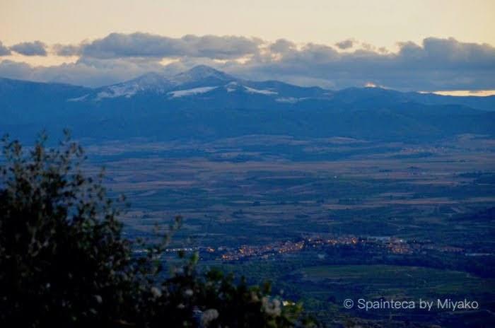 Rioja Spain 高台から眺めるリオハのワイン畑