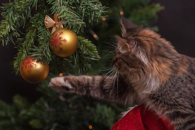 готовим подарки новый год