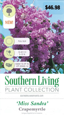 Miss Sandra Crape Myrtle - Southern Living Plant Collection