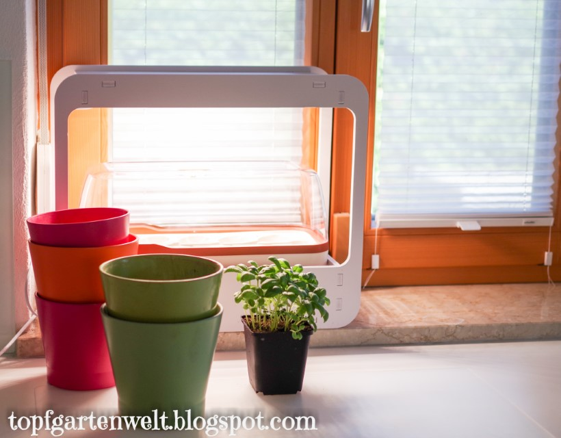Indoor Krautergarten Fur Die Kuche Gesundes Pflanzenwachstum Dank
