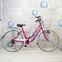 City Bike Evergreen Sakura 7 Speed 26 Inci