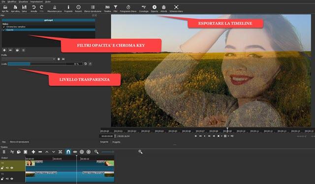 applicare trasparenza a video con chroma key