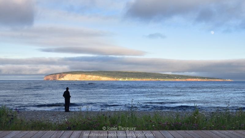 Homme face à l'île Bonaventure